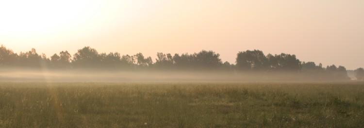 Nebel Geister