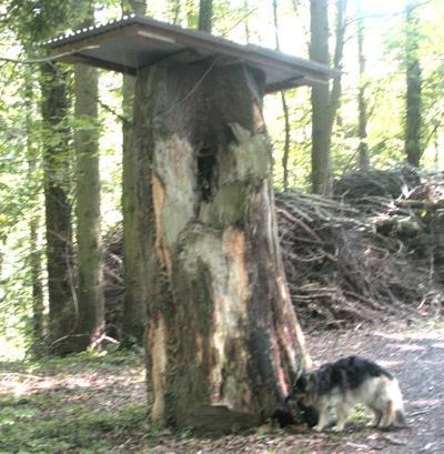 Holz Obelisk