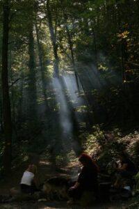 Schamanen im Wald